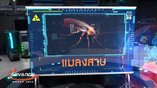 video ep3 | แอ๊ดวานซ์ กรุ๊ป เอเซีย บริษัท กำจัดปลวก กำจัดแมลง ทำความสะอาด